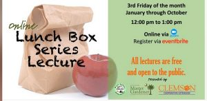 Lunch Box @ Eventbrite online Webinar